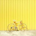 bike 867229