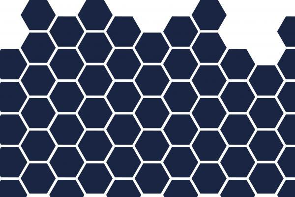 Social Sciences Division honeycomb icon